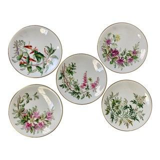 Late 20th Century Vintage Royal Worcester Botanical Decorative Plates - Set of 5 For Sale