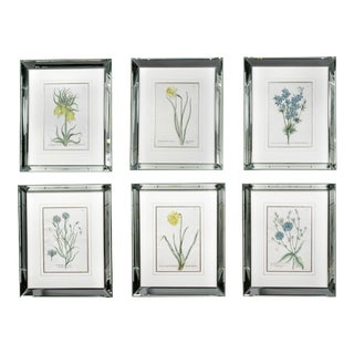 Mid 19th Century Mirror Framed Botanical Prints - Set of 6 For Sale