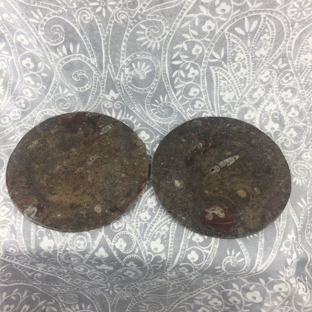 Orthoceras Red Brown Fossil Stone Plates- a Pair For Sale - Image 12 of 12