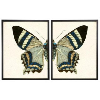 "Split Blue and White Butterfly - 46"" X 29"" For Sale"