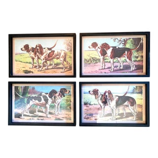 Distress Painted Black Framed Prints of Dogs, - Set of 4 For Sale