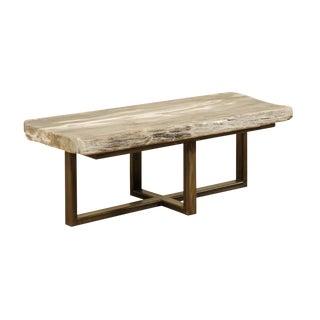 Organic Modern Petrified Wood Slab Coffee Table For Sale