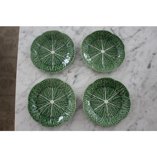 Set of 4 Bordallo Pinheiro Green & White Majolica Style Cabbage Salad Plates For Sale - Image 10 of 10