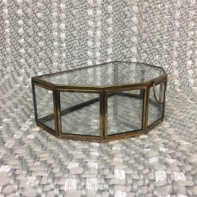 Brass And Glass Half Hexagon Terrarium Chairish - Terrarium coffee table for sale