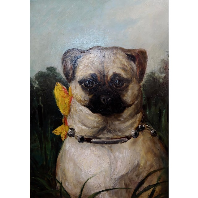 English Traditional Portrait of a Cute Pug -English School Oil Painting For Sale - Image 3 of 8