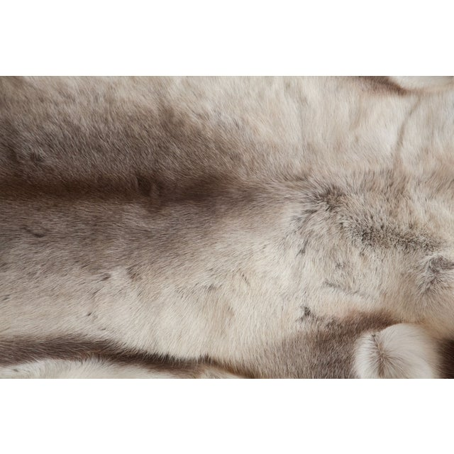 Mid-Century Modern Luxurious Reindeer Fur Throw For Sale - Image 3 of 4