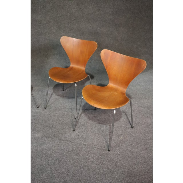 Danish Modern Arne Jacobsen for Fritz Hansen Danish Bentwood Chairs - Set of 4 For Sale - Image 3 of 8