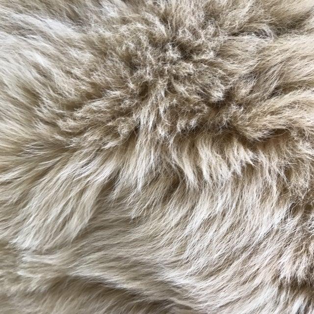Peruvian Baby Alpaca Fur Pillow - Image 3 of 7