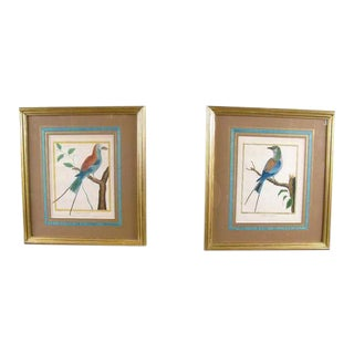 Late 18th Century Martinet - Buffon Engravings - a Pair For Sale