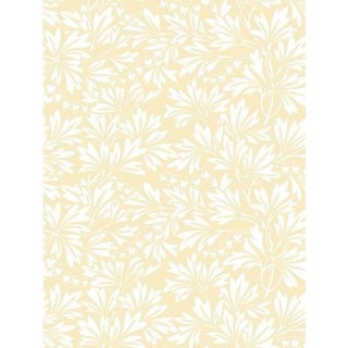 Cole & Son Dialytra Wallpaper Roll - Yellow For Sale