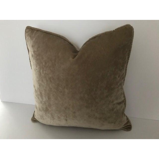 "Contemporary Osborne & Little Taupe Velvet Goose Down Insert Pillow 20""x 20"" For Sale - Image 3 of 5"