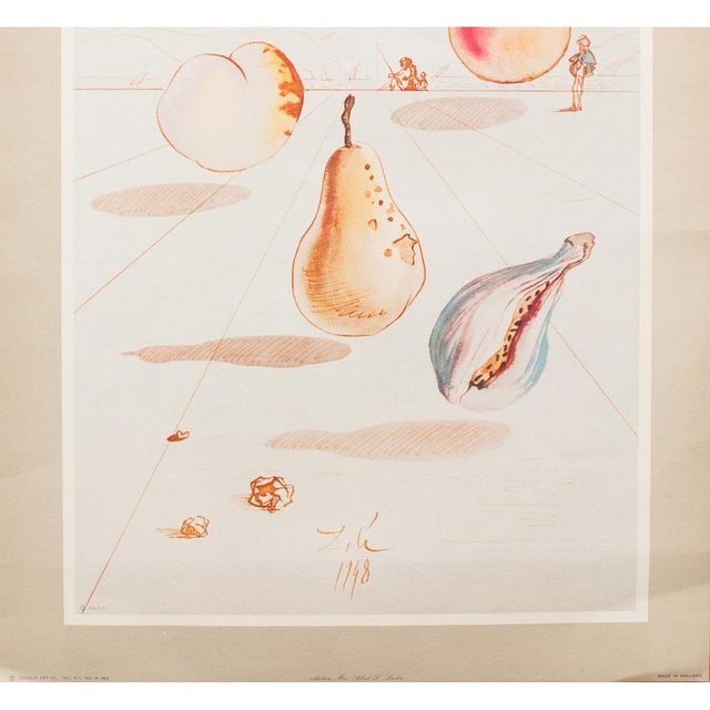 Salvador Dalí 1955 Dali Fruits Original Period Lithograph From the Mrs. Albert D. Lasker Collection For Sale - Image 4 of 13