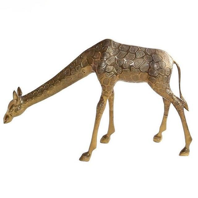 Metal Vintage Cast Bronze Giraffe Medium Sized Sculpture For Sale - Image 7 of 7