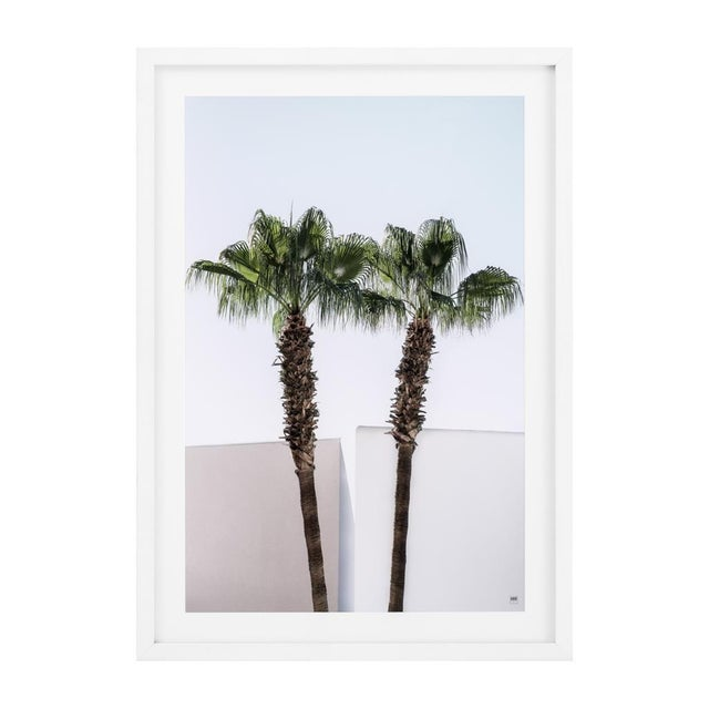 Hang these gorgeous palm prints on your wall and give your home an exotic, sunny feel. The Palm Trees print also features...