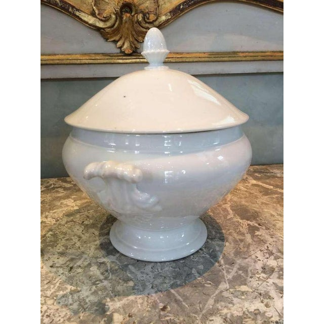 19th century acanthus handled French tureen with lid.