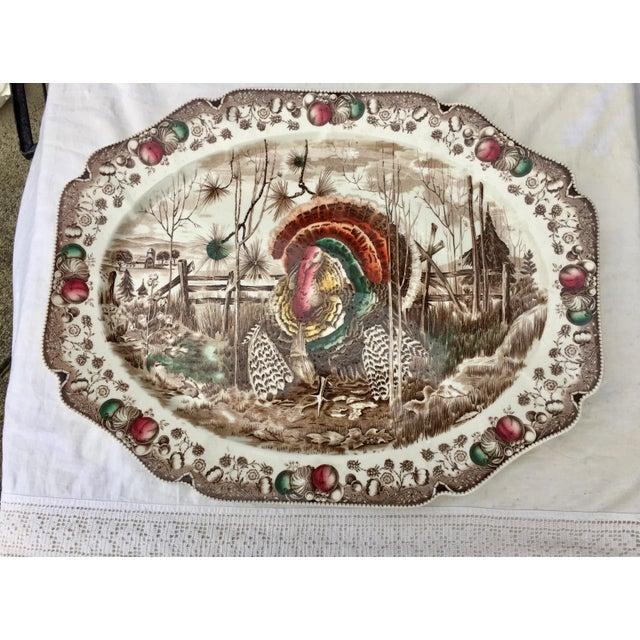 English Transferware Turkey Platter For Sale - Image 11 of 11