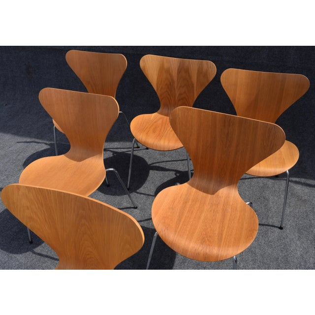 Vintage Arne Jacobsen by Fritz Hansen Danish Modern Series 7 Chairs - Set of 6. For Sale - Image 5 of 11