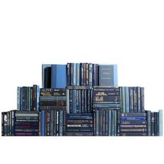 Modern Denim Book Wall : Set of One Hundred Decorative Books