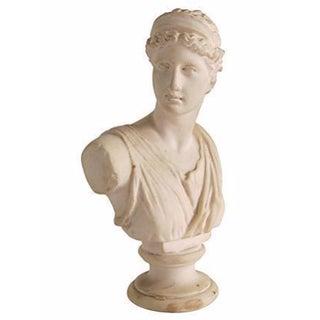 Goddess Bust Form For Sale