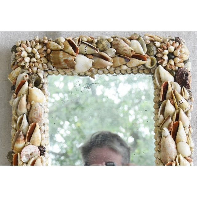 1960s Beach Nautical Seashell Encrusted Mirror For Sale - Image 4 of 7