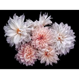 "Photographic Botanical Print, ""Fairytale"" Landscape by Artist Debi Shapiro For Sale"