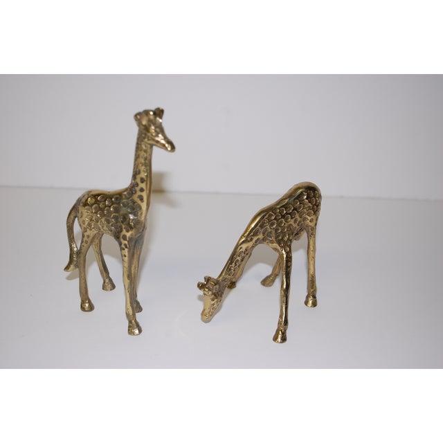1950s Brass Giraffe Figurines - A Pair - Image 3 of 3