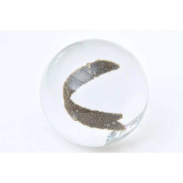Italian Murano Glass Ball/Sphere with Gold Interior Bubbles - Image 10 of 10