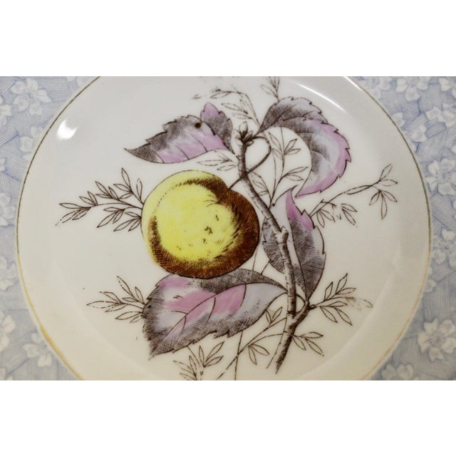 Antique Austrian Dessert Plates, S/11 For Sale In Richmond - Image 6 of 8