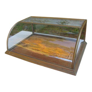 Etched Glass Display Case For Sale