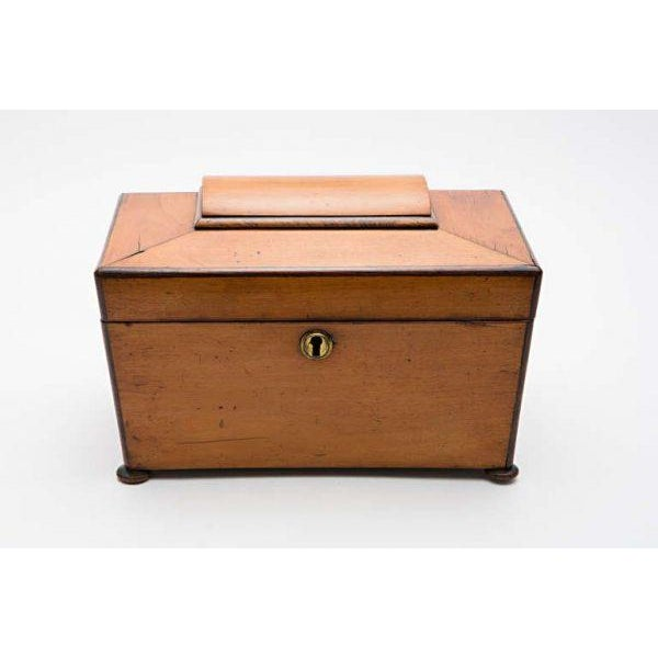 English Traditional 19th Century Satinwood Teacaddy For Sale - Image 3 of 11
