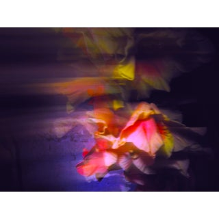 Contemporary Abstract Fine Art Photographic Flower Print For Sale