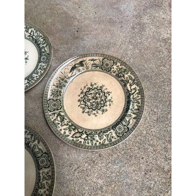 Late 19th Century Antique English Plates Davenport Iolanthe Transferware - Set of 4 For Sale - Image 5 of 7