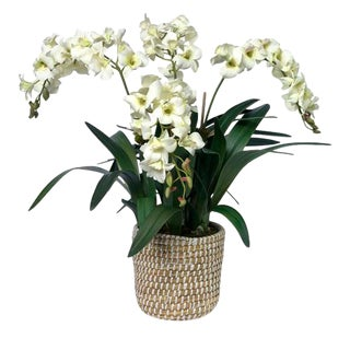 Diane James Faux White Orchid in Basket For Sale