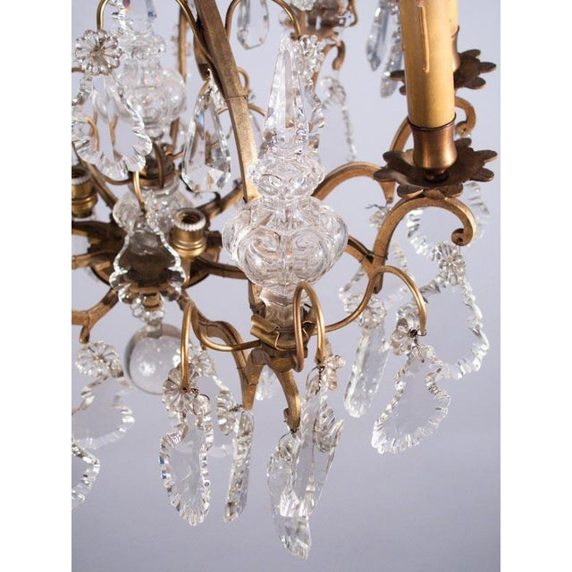 19th Century French Napoleon III Crystal Chandelier For Sale - Image 11 of 13