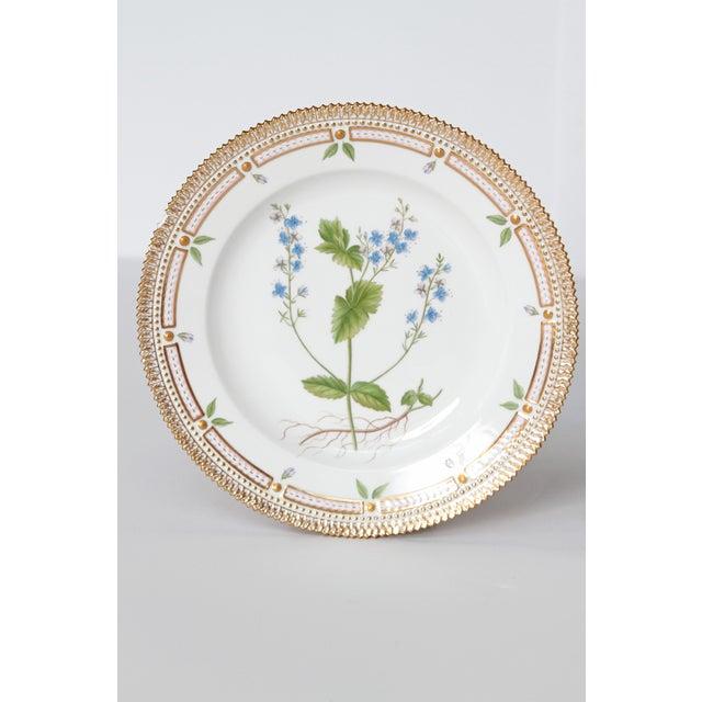 "Pair of Flora Danica plates by Royal Copenhagen 10"" diameter Latin name: Veronica Chamaedrys L. Leontodon hispidus L."
