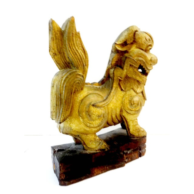 Superb circa 1900 hand carved gilt wood Asian Temple / Foo dog. it has a red loose ball in his mouth ... The animal is a...