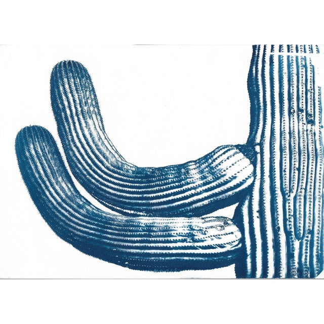 Cactus from the Desert Cyanotype Print - Image 2 of 4