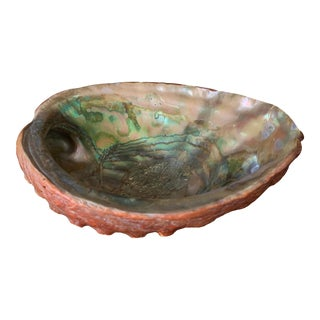 Vintage Natural Abalone Shell Footed Trinket Dish For Sale
