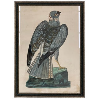 Pair of Hand-Colored Etchings For Sale