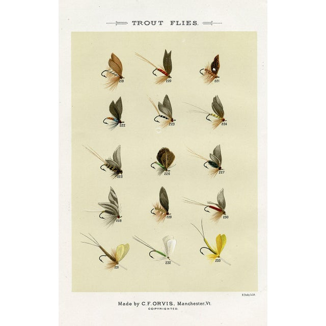 Antique 'Trout Fishing Flies' 1st Edition Print - Image 1 of 2