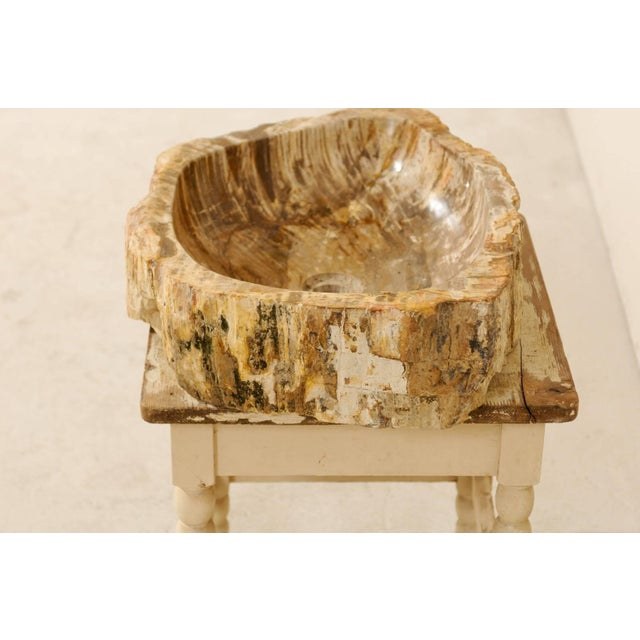 Mid 20th Century Vintage Mid Century Petrified Wood Sink For Sale - Image 5 of 9