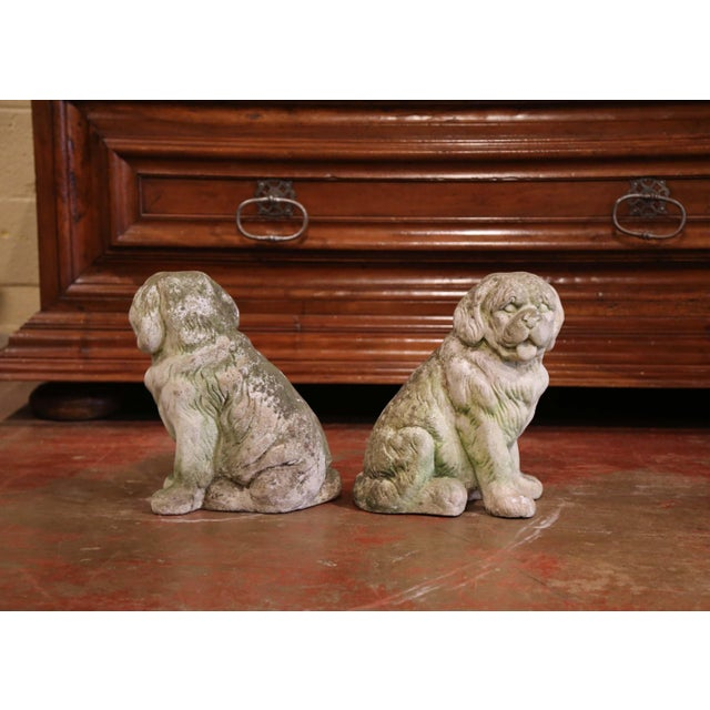 Gray French Vintage Patinated Cast Stone Saint Bernard Dogs Sculptures - a Pair For Sale - Image 8 of 9