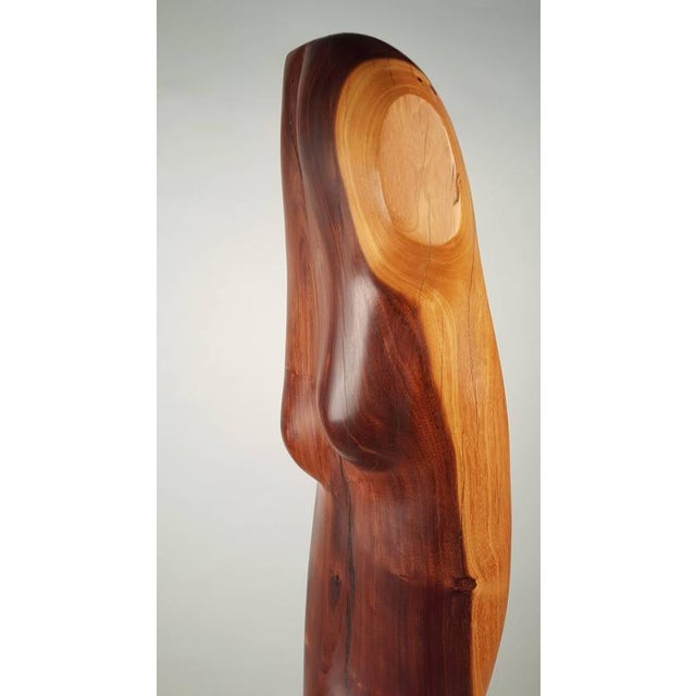 Aluminum Rare Solid Ebony Norman Ridenour Sculpture For Sale - Image 7 of 10
