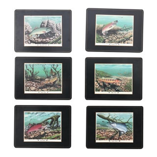 Mid-Century Pimpernel Fish Placemats - Set of 6 For Sale