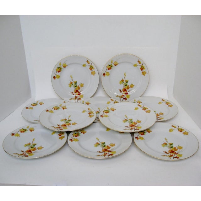 Asian Japanese Porcelain Salad Plates - Set of 10 For Sale - Image 3 of 4