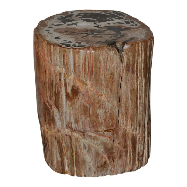 Ancient Petrified Wood Side Table For Sale