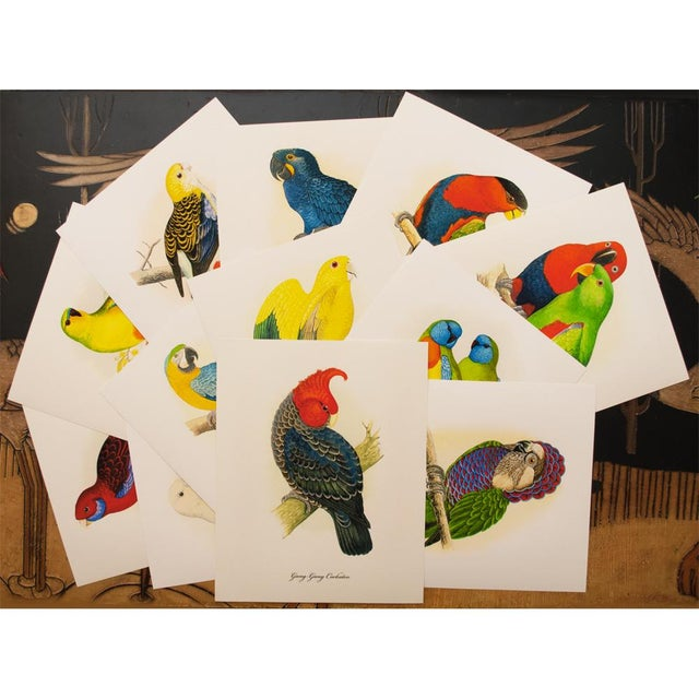 Green 1884 Alexander Francis Lydon, Parrot Reproduction Set of 12, N1 For Sale - Image 8 of 11