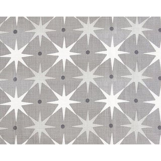 Hinson for the House of Scalamandre Star Power Fabric in Grey For Sale