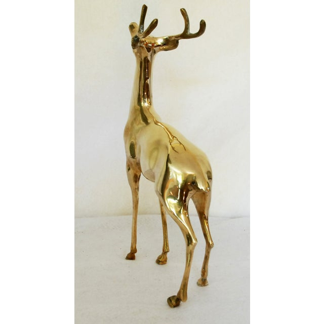 Vintage Solid Brass Buck - Image 5 of 6