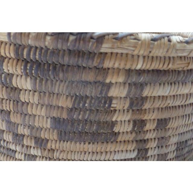 Antique Apache Basket Circa 1890-1920 - Image 4 of 11
